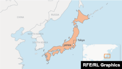 Лавина зійшла у місті Насу приблизно за 190 кілометрів на північ від Токіо
