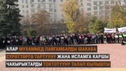 Бишкекте Франциянын президентине каршы митинг өттү