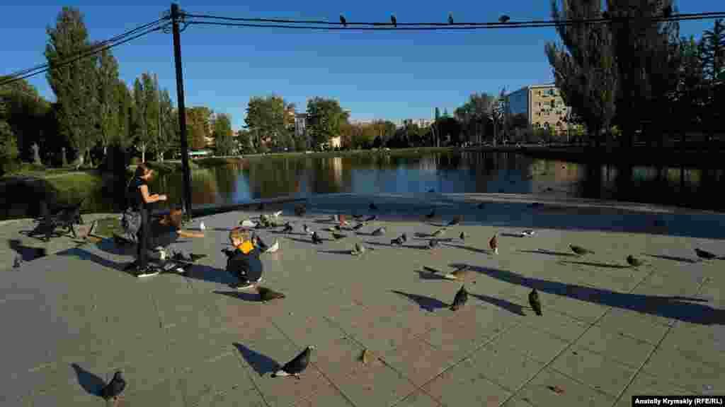 Парковые голуби слетелись на угощенье