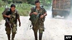 Pjesëtarë të FARC-ut