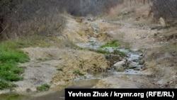 Вода из ручья непригодна для питья