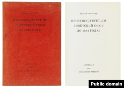 Обложка книги Амальрика
