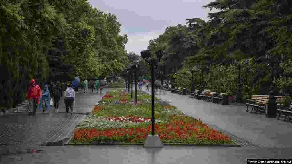 Цветущие клумбы на Приморском бульваре