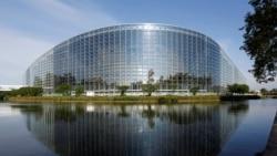 """Interviu cu europarlamentarul Helmut Scholz despre """"furtul miliardului"""""""