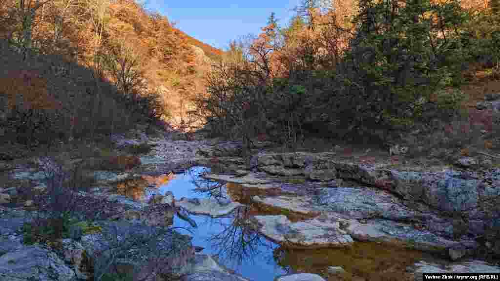 В водной глади отражается синее небо и голые ветви деревьев