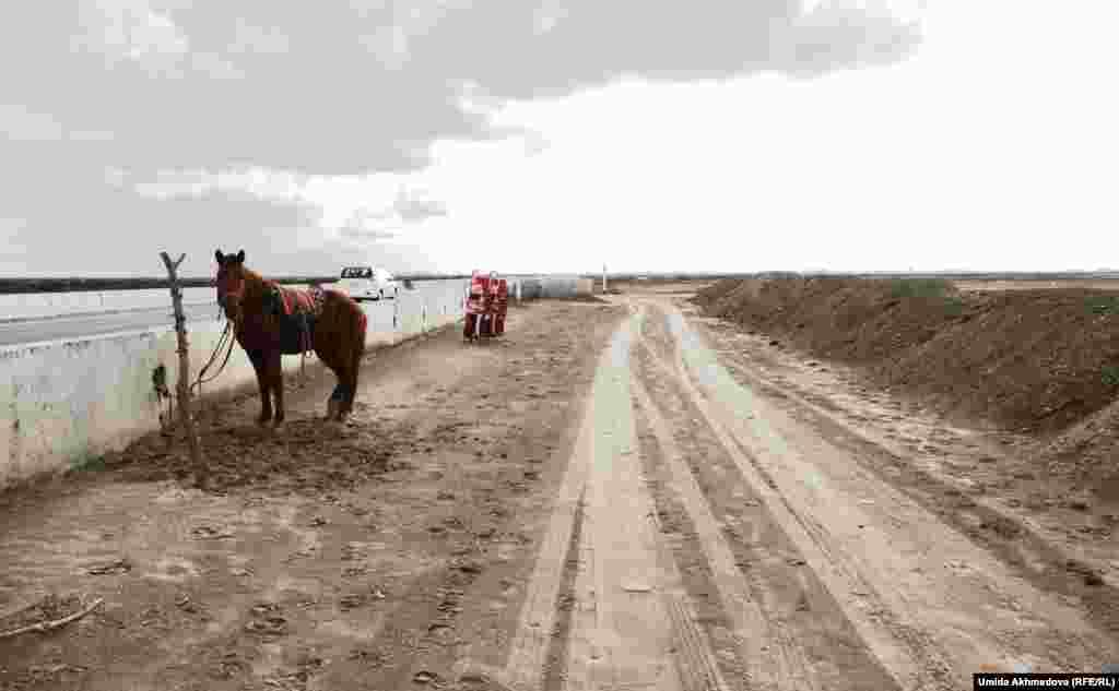 Шават кентінен Хорезм облысының әкімшілік орталығы Үргенішке баратын жол.