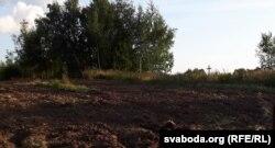 Узаранае поле аршанскай бітвы