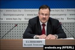 Першы намесьнік старшыні Вярхоўнага Суду В. Л. Калінковіч