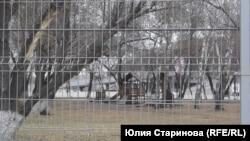 За забором оказался центральный стадион и детская площадка рядом с ним