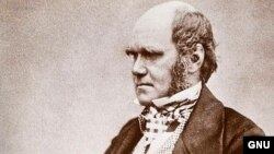Charles Darwin (1809.- 1882.)