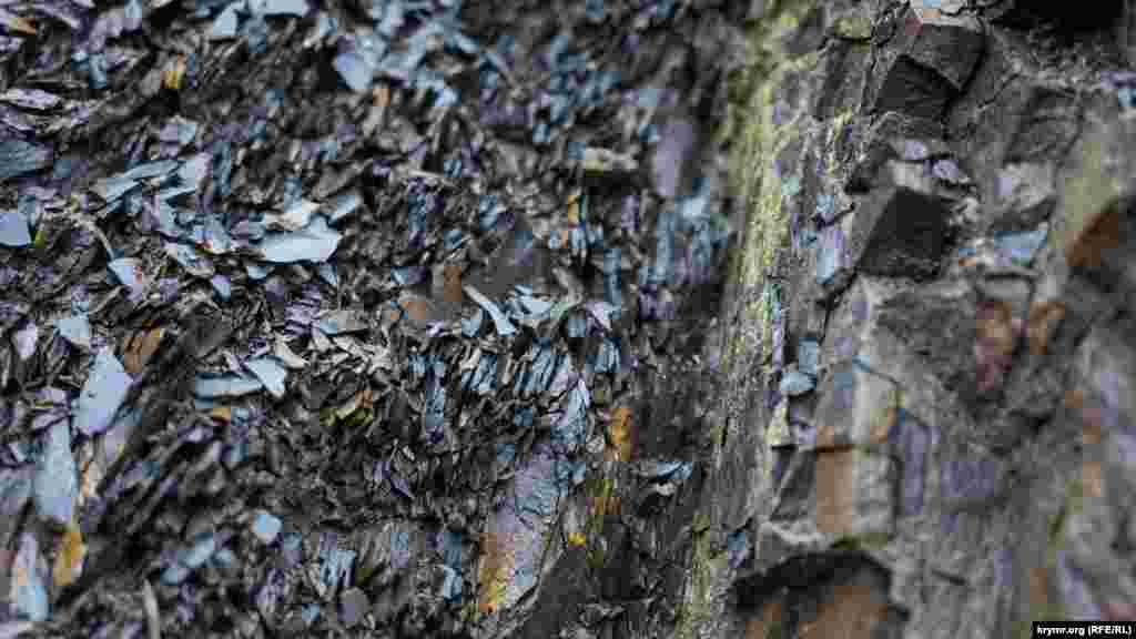 Аргіліт – особливий вид осадової гірської породи, що являє собою скам'янілу глину, яка за кілька мільйонів років під впливом тиску поверхневого ґрунту і високих температур придбала неймовірну твердість і міцність
