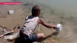 Вода приносит и трупы животных - такую пьют жители в Ошской области