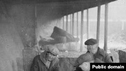Чикагские бездомные, 1929 год