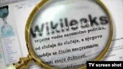 سازمانهای اطلاعاتی آمریکا میگویند که ویکیلیکس به دستگاههای امنیتی روسیه متصل است، اتهامی که ویکیلیکس آن را رد میکند.
