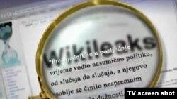 ویکیلیکس اعلام کرده که این اقدام پاسخی به پاکسازیهایی است که پس از کودتای نافرجام در ترکیه صورت میگیرد.