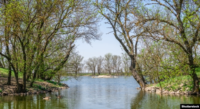 Озеро у заповіднику «Асканія-Нова»