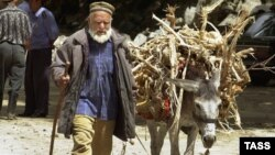 Tacikistanda ulaqlar ölü tapılır...