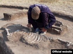 A skeleton of a horse is unearthed next to a twin grave for humans, dating back to around 1300 B.C., in Qaraghandy.