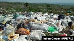 Depozitul de gunoaie de lîngă Negrești