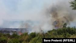 Пожежа на півострові Луштица, Чорногорія, 17 липня 2017 року
