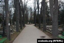 Цэнтральная алея Вінаградзкіх могілак у Празе