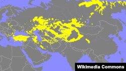 Türk dillərinin yayılma arealı