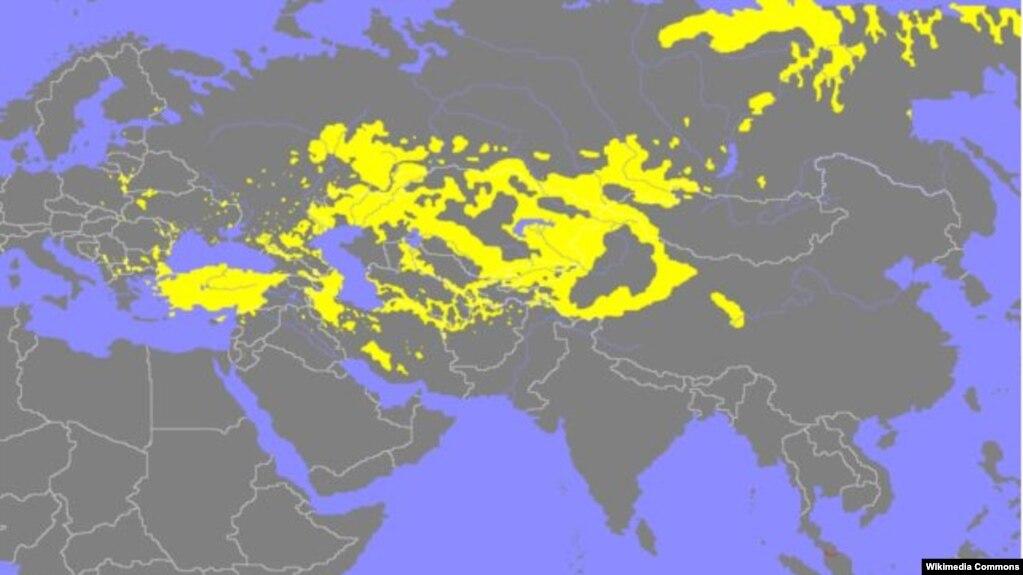 Территория распространения тюркских языков
