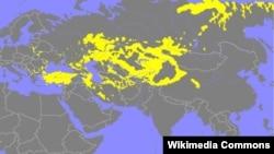 Türk dillərinin yayılma xəritəsi