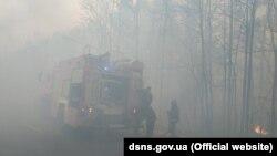 16 квітня ДСНС отримала інформацію про загорання сухої трави та лісової підстилки на території Виступовицького лісництва поблизу сіл Рудня та Виступовичі в Житомирській області