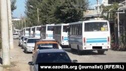 Колонна автобусов с узбекскими хлопкоробами. Самаркандская область, 14 сентября 2015 года.