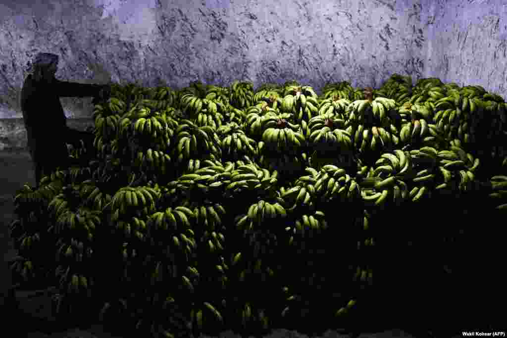 An laborer arranges bananas after unloading them from a truck in a warehouse at a fruit market in Kabul. (AFP/Wakil Kohsar)