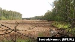 Будущая платная автодорога через Химкинский лес