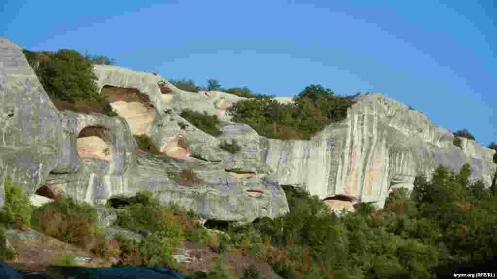 На скалах причудливой формы растут деревья