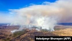 Пожежа в Чорнобильській зоні, 12 квітня 2020 року