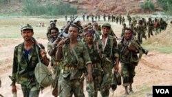 Миротворцы Африканского союза в Кот-д'Ивуар