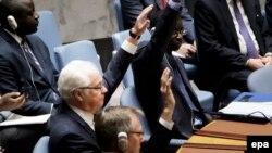 Ambasador rus në OKB, Vitaly Churkin