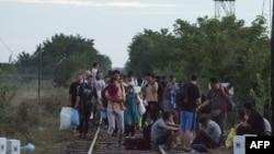 Беженцы на венгерско-сербской границе