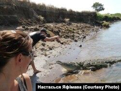 Знаёмства з костарыканскім алігатарам