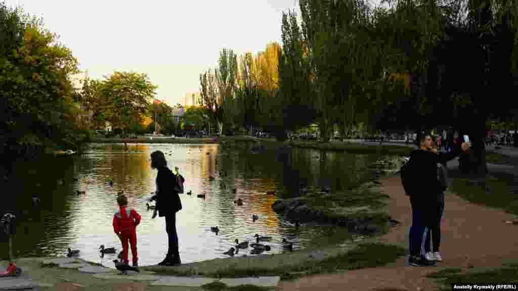 Вот-вот над прудом и парком опустятся сплошные сумерки