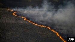 Пожежа в зоні відчуження, 28 квітня 2015 року