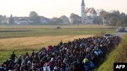 Беженцы на хорватско-словенской границе, 26 октября 2015