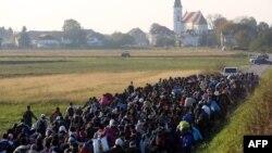 Izbjeglice na slovensko - hrvatskoj granici u mjestu Rigonce 2015. godine
