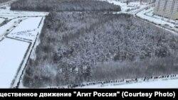 """Жители Сургут """"обнимают"""" парк в знак протеста против вырубки деревьев"""