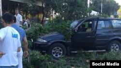 Упавшее в Ташкенте дерево придавило двух женщин.