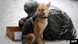 A homeless man begs with his dog during a snowfall in central Moscow. (file photo)