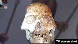 Реконструкція черепу доісторичної людини, знайденої в Китаї
