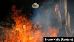 Požari u prašumi Amazona