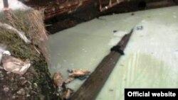 Урта Кабан күле. Экология минстрлыгы фотосы