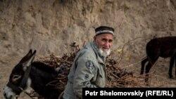 Пожилой мужчина загружает на осла заготовленные дрова. Худжандская область, ноябрь 2015 года.