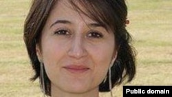 Gelareh Bagherzadeh, a Texas Medical Center student and Iranian activist was shot dead in Houston in 2012.